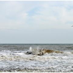 Ноябрьское море!