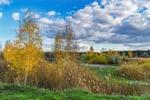 Осень, осень, золотые листопады...