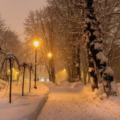 Ніжна зима...