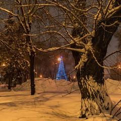 Іще один святковий зимній вечір...