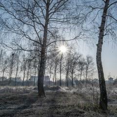 Зимовий блюз...