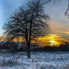Зима лютує...