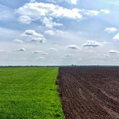 Three rectangles: Land & Sky