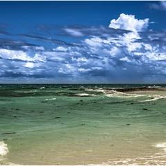 На безлюдном островке в Индийском океане...