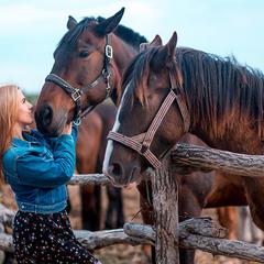 Но что-то кони мне попались привередливые