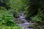 Карпатские реки