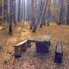 Осенний мотив.