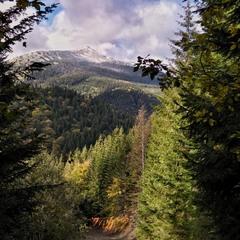 Вид на гору Довбушанець. Ґоргани, Карпати. І осінь, і зима, і літо.
