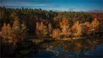 Осінь в Бондарцях