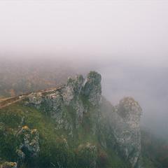 Говди в тумані
