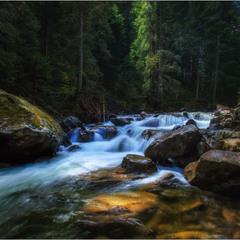 Холодні води Карпат