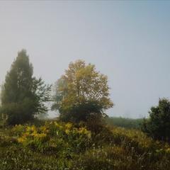 Осінні тумани