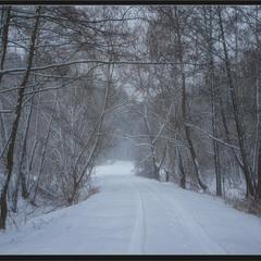 Цієї зими...
