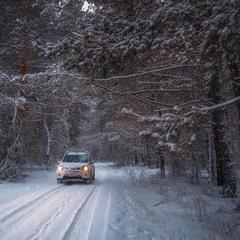 Зимовими дорогами