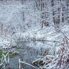 Зимові струмочки