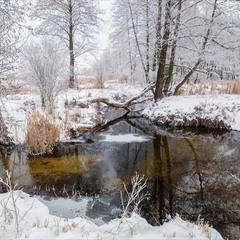 Були ж зими?)
