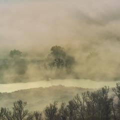 В объятиях тумана