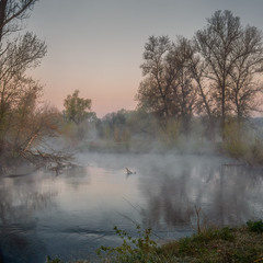 Дыхание реки