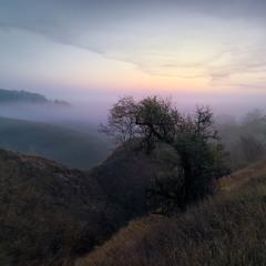 Туманные перспективы