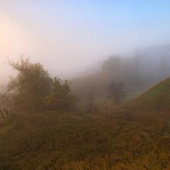 В плену тумана...