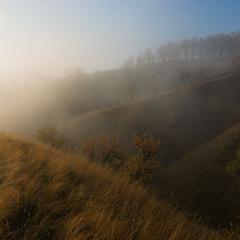 Солнце в тумане)