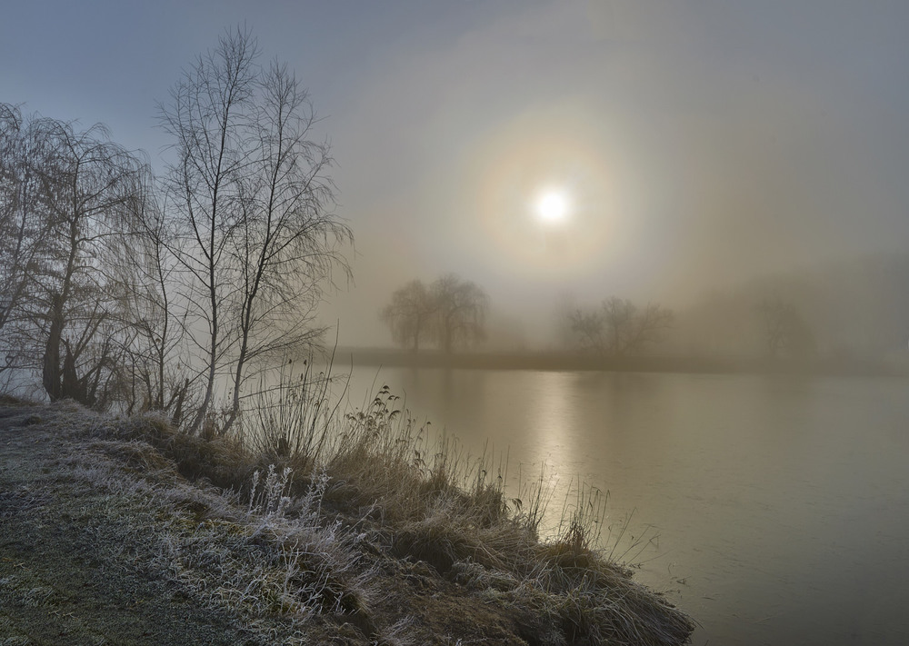 Картинка утро туманное утро
