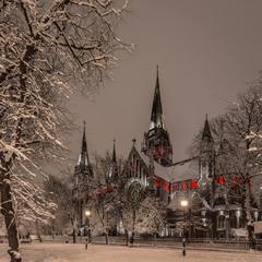 В зимнем наряде)
