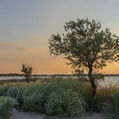 Пляж ВЕРХОВАЯ Бердянск