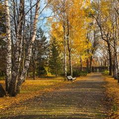 Осень золотая бродит по дорожкам..