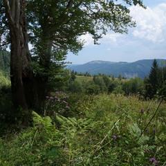 На горизонті гора Маковиця.