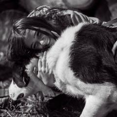 Тварини знають цiну дружби