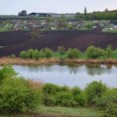 Село в зеленому розмаї