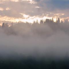 Заслала гори сива пелена