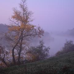Туман і тиша, тиша і туман...