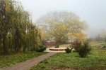Парк, туман