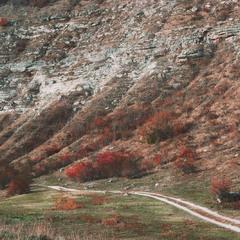 Осень в Старом Оргееве