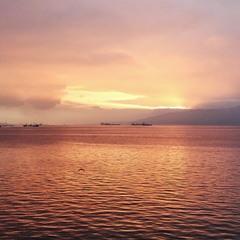 Мексиканский залив
