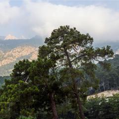 В горах Западного Тавра