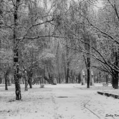 Уголок старого парка