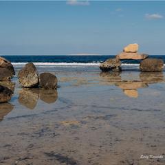 Сад камней Красного моря