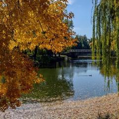 Жовтень у старому парку