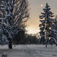 Зимние дни короткие...