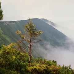 Тут гуляють вітри і тумани