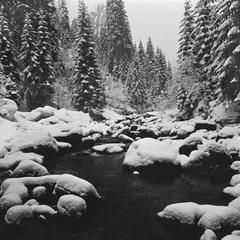 Зимовий Прут