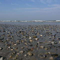 Побережжя Північного моря