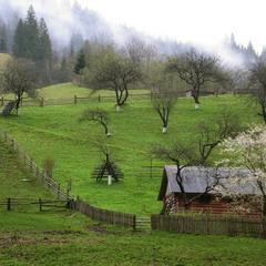 Весна прийшла у гори