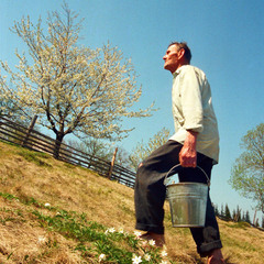Весна у Космачі