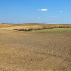 Весняне поле