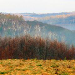 Весняний краєвид Львівщини