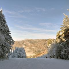 Цветная зима